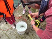 Quercus Crab Fishing Competition May 25th 2014